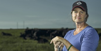 Kansas Ranching Blythe