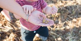 child holding soybeans
