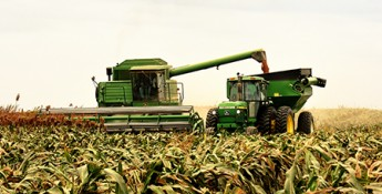 Fall harvest with combine and grain cart