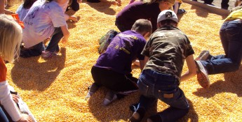 Kids hunt coins at the Oakley Corn Festival.