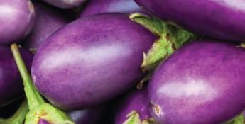Oven Eggplant Pizzas