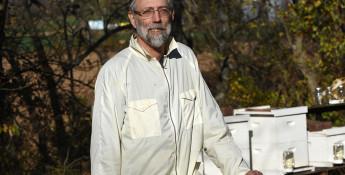 Tim Gogolski, Gogo's Bees
