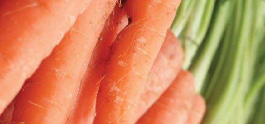 Carrots Salad Recipe