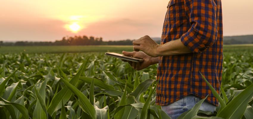 farmer using a tablet in a field