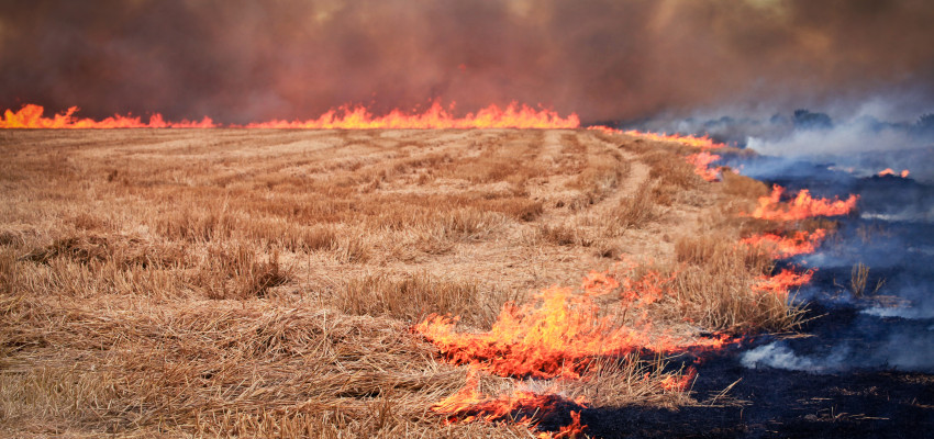 Prescribed fire in Kansas