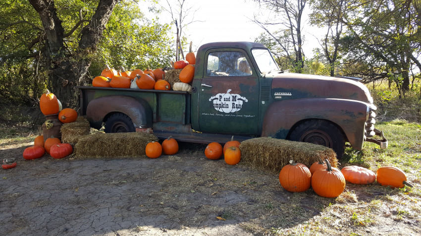 A Pumpkin Patch In Kansas You Don't Want to Miss | Kansas ...
