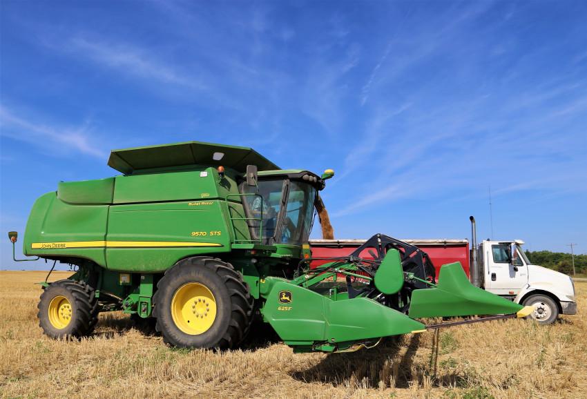 Austin Moore_Harvesting wheat