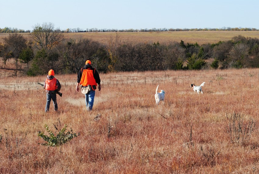 Hunters with their dogs during a hunt at Bigge Farm.
