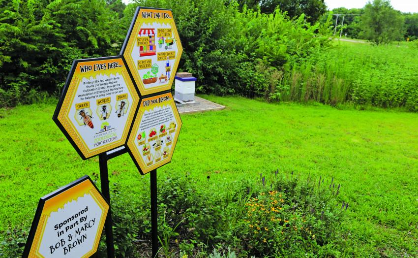Bee Signage