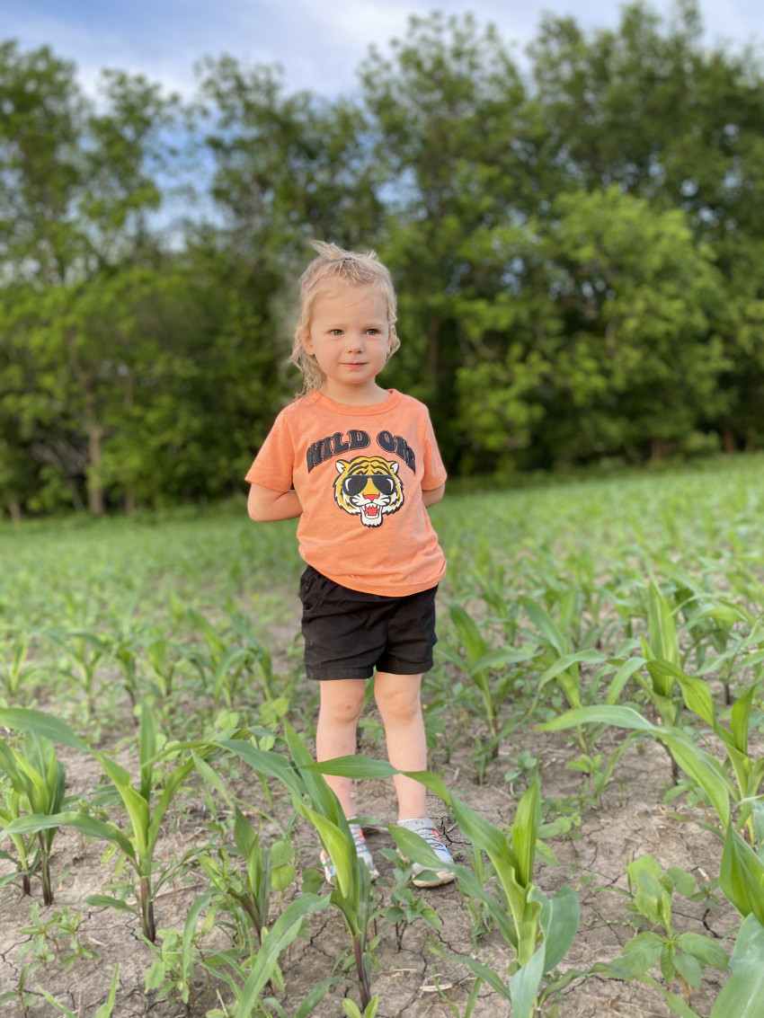 Oakley in corn field