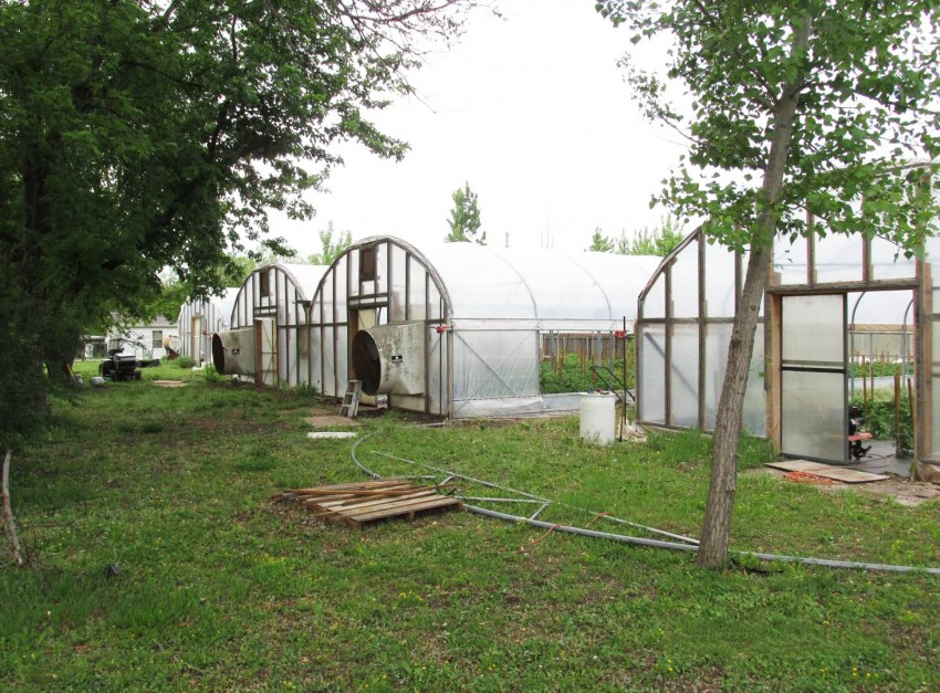Griggs Family Farm