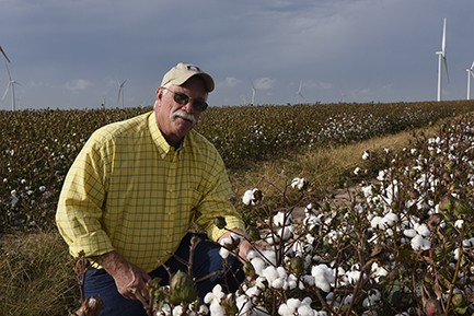 Kent Goyen in cotton field