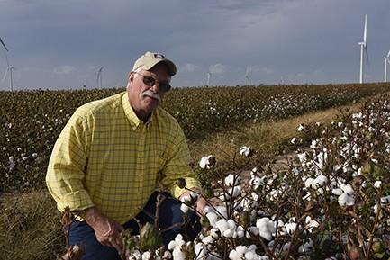 Kent Goyen in cotton field