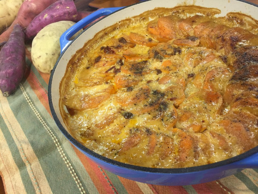 Chipotle Sweet Potato Gratin