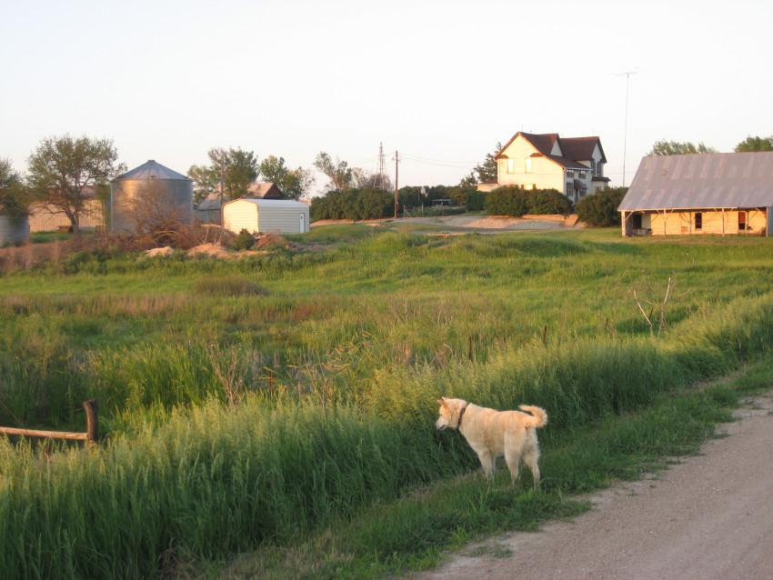 holthusfarm_-_memorial_day_2010