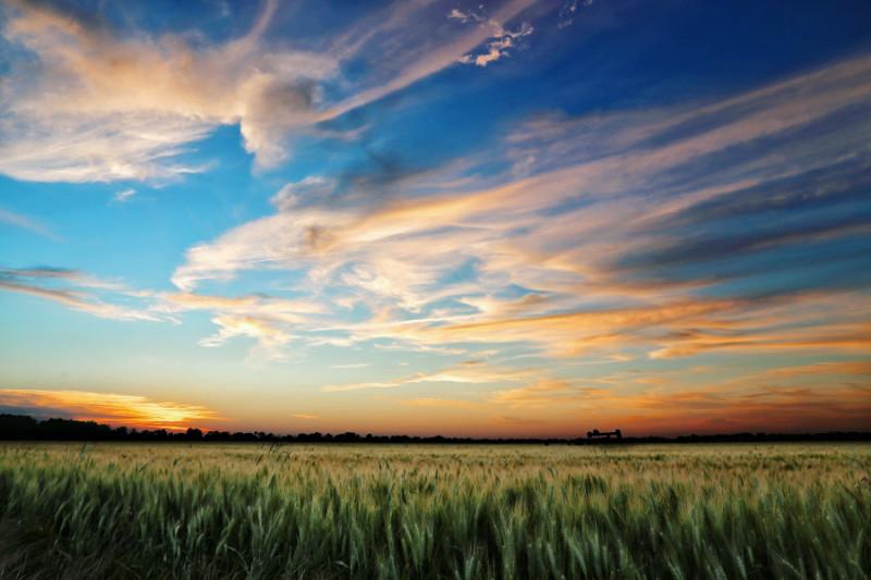 Kansas skies and field