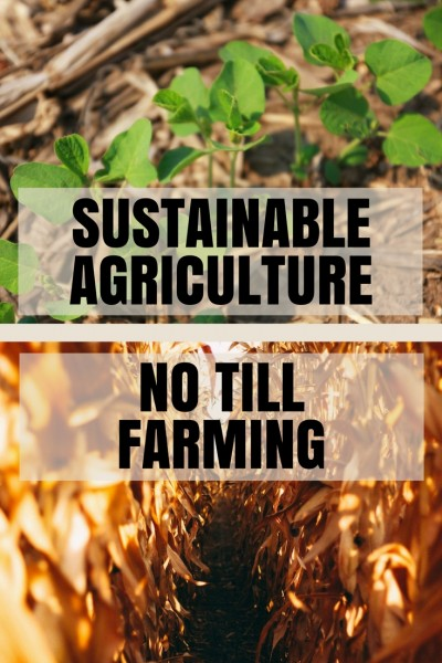 sustainable agriculture with no till farming