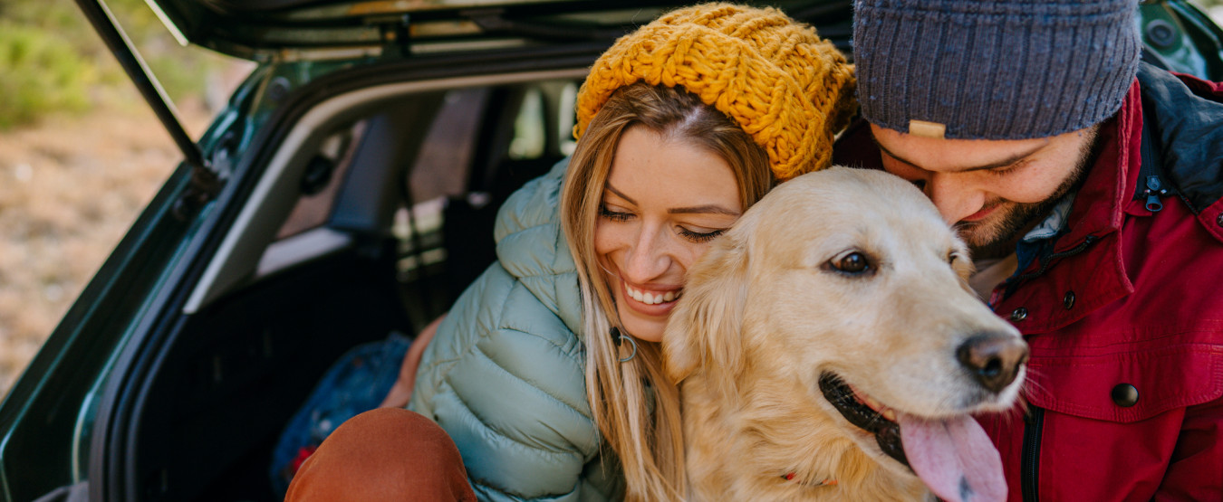 couple and dog in the back of a car