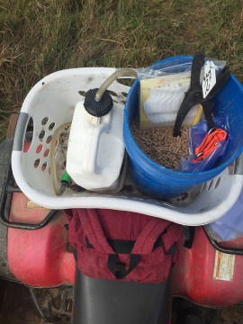calving tools for the farm