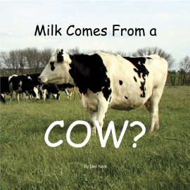 Milk Comes from a Cow? book cover