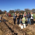 Group Gleaning