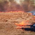 Prescribed fire in Kansas