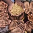worldhunger_hands