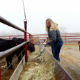 Jacquelyne Leffler feeds cattle